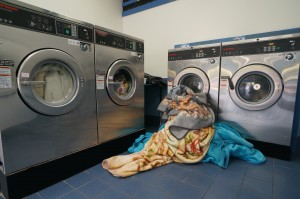 Logan Central Laundromat front load washing machines